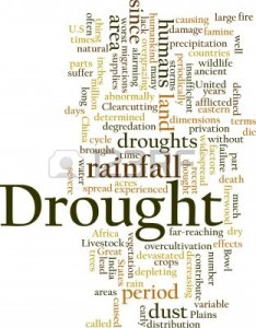 5641498-word-cloud-concept-illustration-of-drought-rainfall
